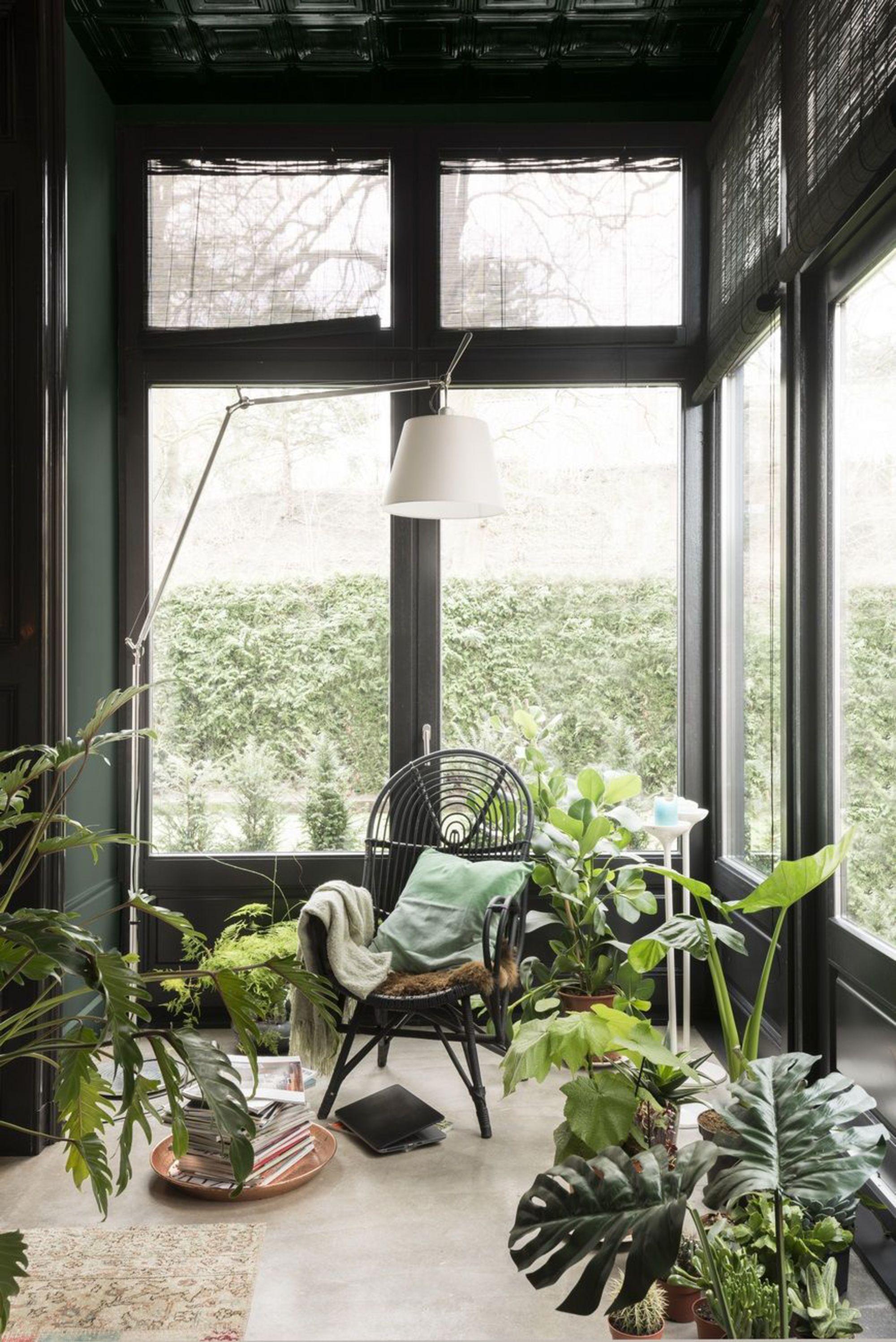 jardin-d-hiver-peint-en-vert